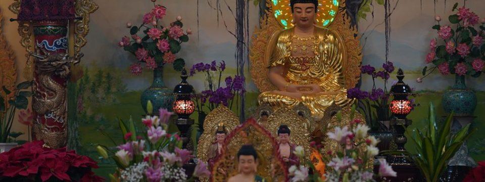 Pháp Thoại nhân dịp Mừng Phật Thích Ca Thành Đạo